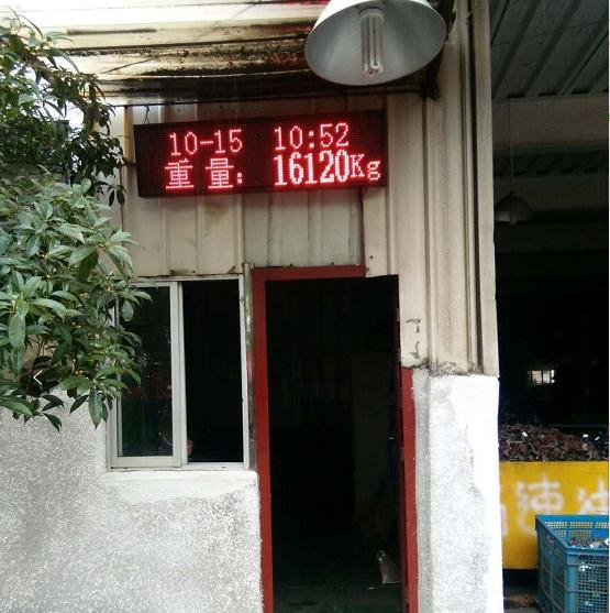 浙江步阳集团12寸时间重量同时显示