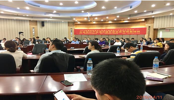 提升企业国际竞争力,海外知识产权维权诉讼应对技能培训