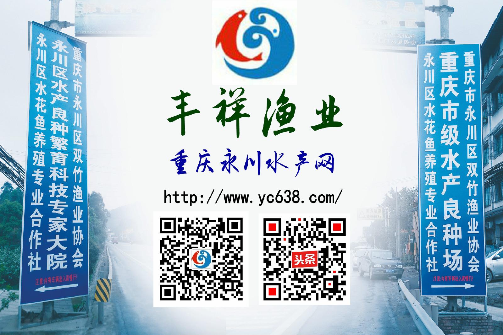 重庆永川水产网 重庆市永川区丰祥渔业有限公司欢迎光临!