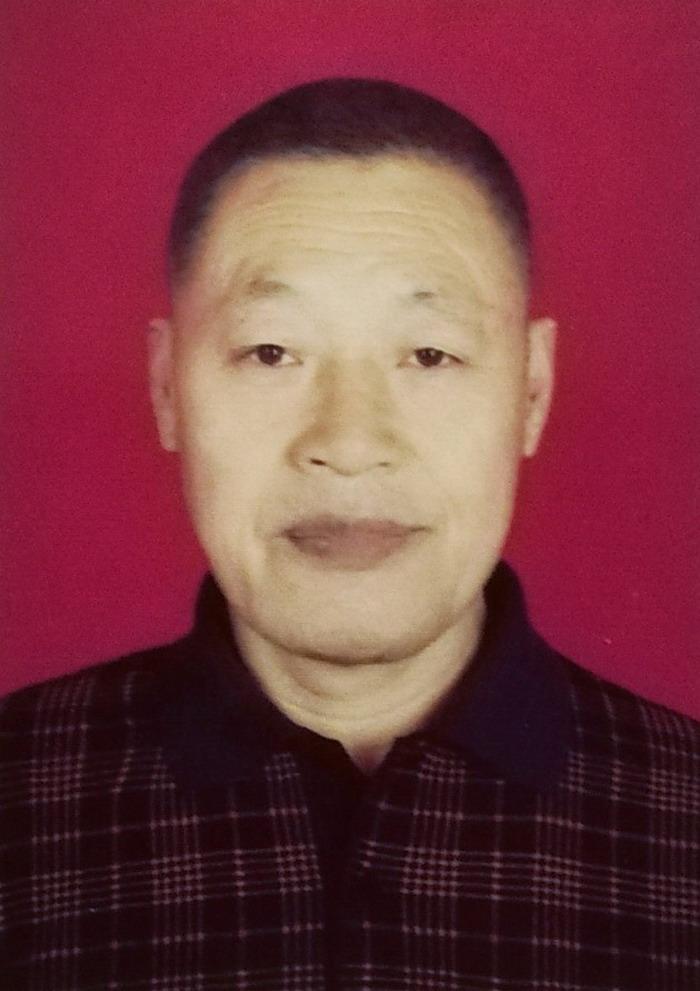 段建辉,中国收藏协会 副会长